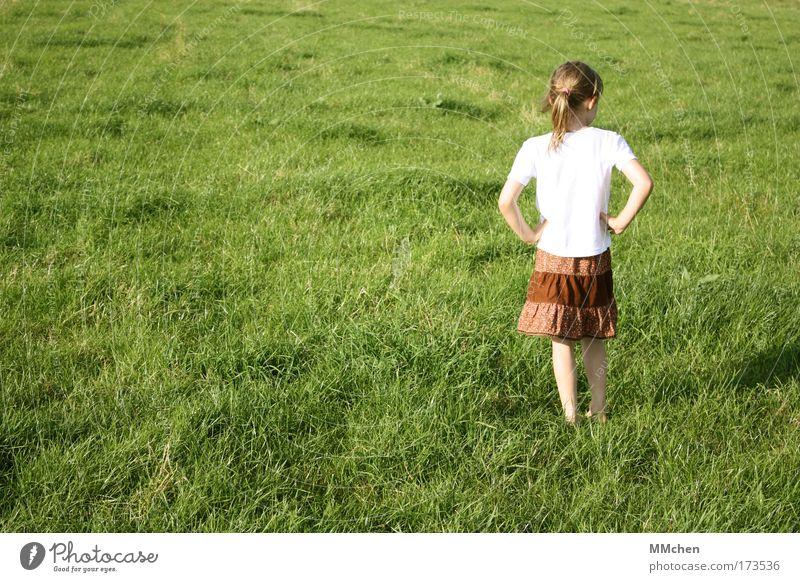 ich steh hier so rum, fideldum Farbfoto Außenaufnahme Textfreiraum links Tag Spielen Abenteuer feminin Kind Kindheit 1 Mensch 3-8 Jahre Natur Sommer Gras Wiese