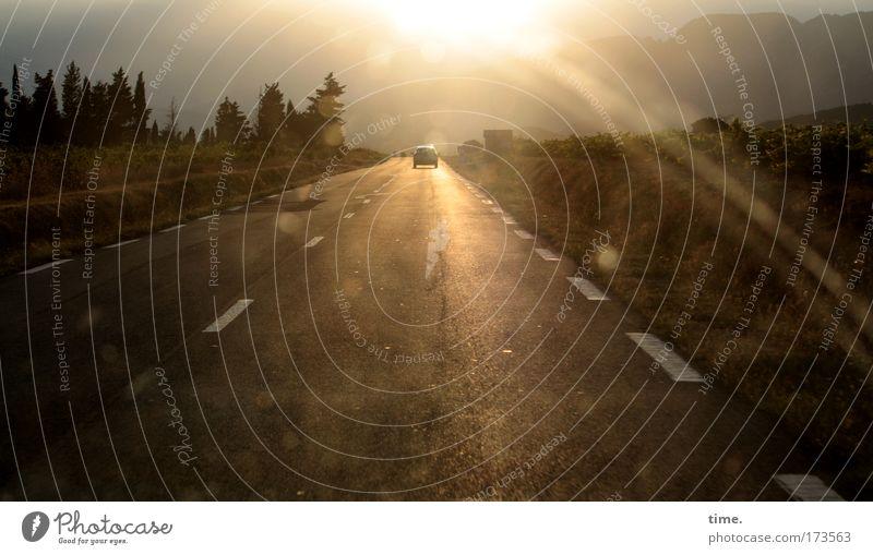 Nach Süden Baum Ferien & Urlaub & Reisen PKW dreckig Horizont Perspektive Sehnsucht Autobahn Flucht Gegenlicht Fernweh Fahrbahn KFZ Abendsonne Scheibenwischer