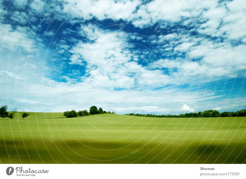 SPEED blau Wolken Himmel Straße Freiheit Straßenverkehr Horizont fahren Sträucher weich Autobahn Amerika ökologisch Pferderennen grasgrün Sommergefühl