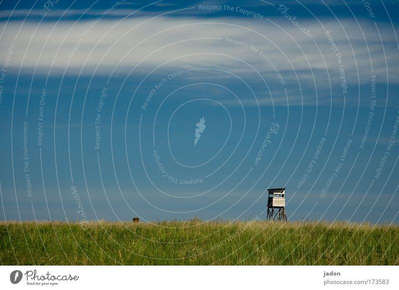 Ausblick Himmel blau grün Wolken Ferne Umwelt Wohnung warten hoch Sicherheit Macht Turm beobachten Schutz Jagd Leiter