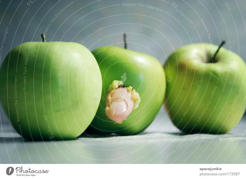 Fingerfood Leben Bewegung lustig Frucht Lebensmittel Ernährung Apfel gruselig lecker Bioprodukte hängen Fressen krabbeln Vegetarische Ernährung sauer