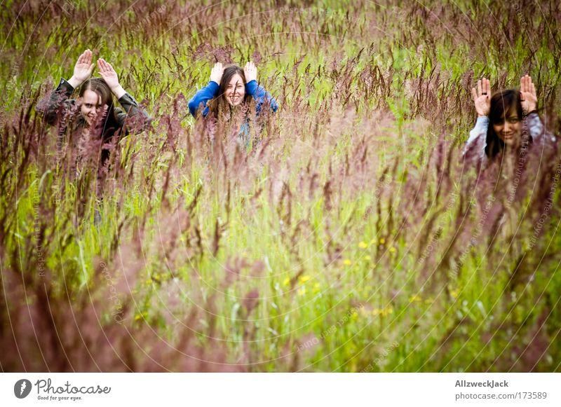 ja is denn schon ostern?! Mensch Natur Jugendliche Hand Pflanze Sommer Freude Wiese Gefühle Gras Kopf Menschengruppe Freundschaft Zusammensein natürlich Fröhlichkeit