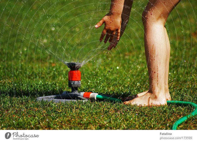 Wasserspiel Farbfoto mehrfarbig Außenaufnahme Tag Mensch Mädchen Arme Hand Finger Beine Fuß 1 3-8 Jahre Kind Kindheit Umwelt Natur Pflanze Erde Wassertropfen