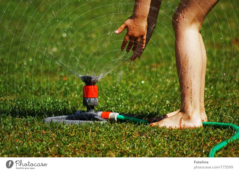Wasserspiel Mensch Kind Natur Wasser Hand grün Pflanze Sonne Mädchen Umwelt Wiese Gras Wärme Garten Beine Fuß