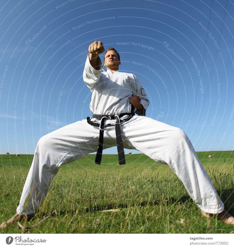 GUTE-NACHT-PUNCH Mann schwarz Kraft Körperhaltung stark Typ Kontrolle kämpfen Kerl Schlag schlagen Gürtel Kampfsport Defensive Karate
