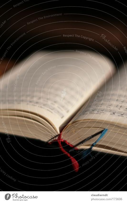 Sonntags Farbfoto Innenaufnahme Detailaufnahme Textfreiraum oben Textfreiraum unten Schwache Tiefenschärfe Sänger Chor Musiknoten Lied Buch Gesangbuch Kirche