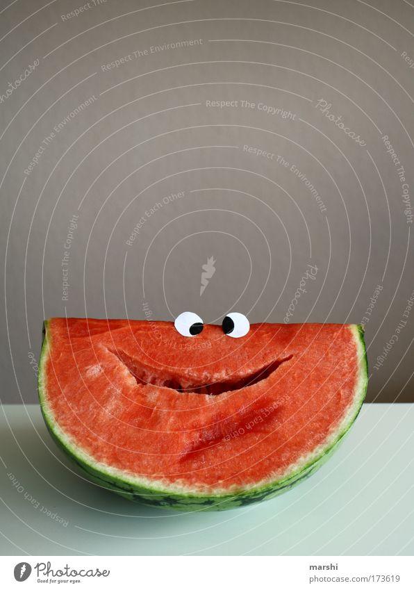 Wilfried Wassermelone Farbfoto Blick Lebensmittel Frucht Ernährung Bioprodukte Vegetarische Ernährung Diät Lächeln lachen saftig rot Gefühle Freude Fröhlichkeit