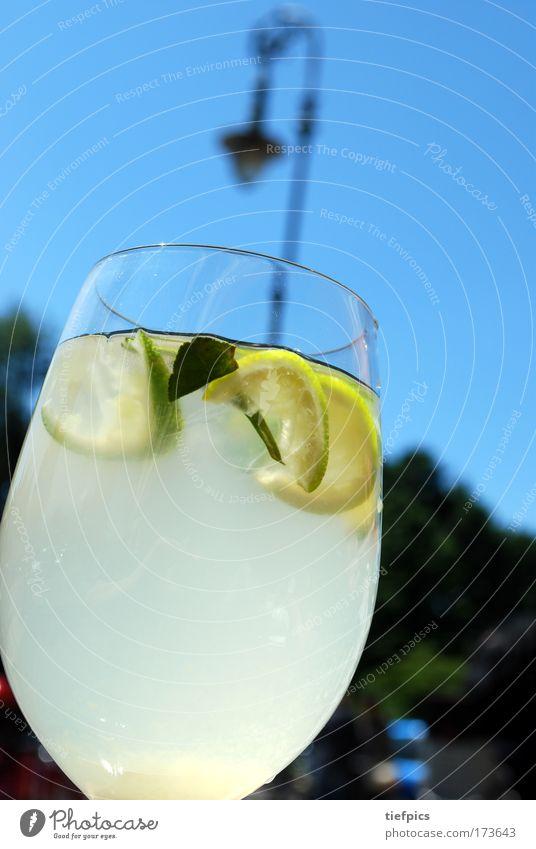 sommer in berlin Außenaufnahme Tag Lifestyle exotisch Bar Cocktailbar ausgehen trinken Gastronomie Schönes Wetter Wärme Feste & Feiern genießen trendy blau
