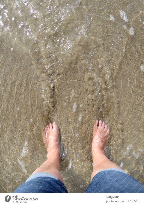 Fußbad... harmonisch Wohlgefühl Erholung Meditation Ferien & Urlaub & Reisen Freiheit Sommer Sommerurlaub Sonne Strand Meer feminin Beine 1 Mensch Jeanshose