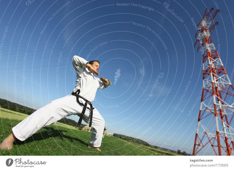 SICH ZUSAMMENREISSEN Mann schwarz Kraft Körperhaltung stark Typ Kontrolle kämpfen Kerl Gürtel Kampfsport Defensive Textfreiraum Karate Kämpfer