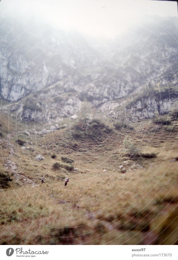 Crop it! Mensch Mann Natur Berge u. Gebirge Landschaft Erwachsene wandern Umwelt Felsen Klettern Alpen Hügel Gipfel Bergsteigen Nebelschleier Nebelstimmung
