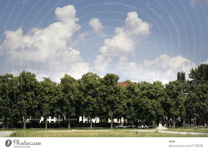 Millionendorf (versteckt sich) Himmel Baum Sommer Wolken Wiese Landschaft Wege & Pfade Park München