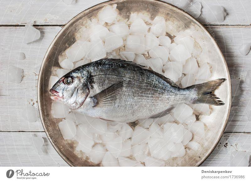 Dorado-Fische auf der Metallplatte mit Eis Meeresfrüchte Ernährung Teller Tisch Holz frisch schwarz weiß Hintergrund Essen zubereiten Speise Lebensmittel