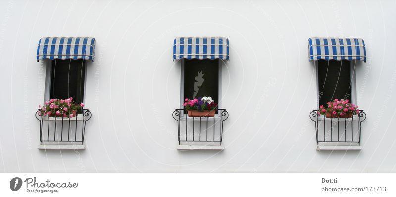 bel étage blau weiß Haus Fenster Wand Architektur Gebäude Mauer elegant Fassade Streifen Wetterschutz Hotel Dorf Balkon Geländer