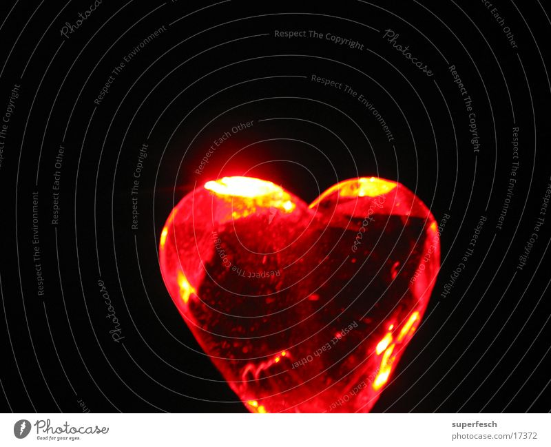 Let Love Rule (3) rot Liebe Lampe Wärme Herz glänzend Physik