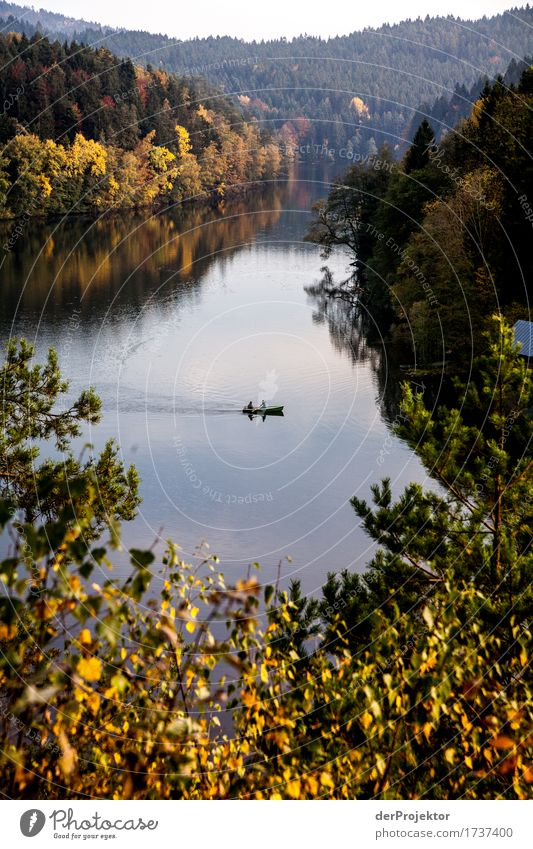 Jetzt fahren wir übern See... Natur Ferien & Urlaub & Reisen Pflanze Landschaft Tier Freude Ferne Berge u. Gebirge Umwelt Gefühle Herbst Küste Freiheit See Tourismus wandern