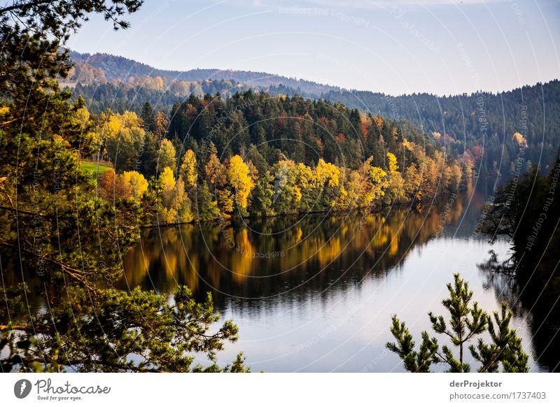 Herbststimmung in Bayern Ferien & Urlaub & Reisen Tourismus Ausflug Ferne Freiheit Berge u. Gebirge wandern Umwelt Natur Landschaft Pflanze Tier Schönes Wetter