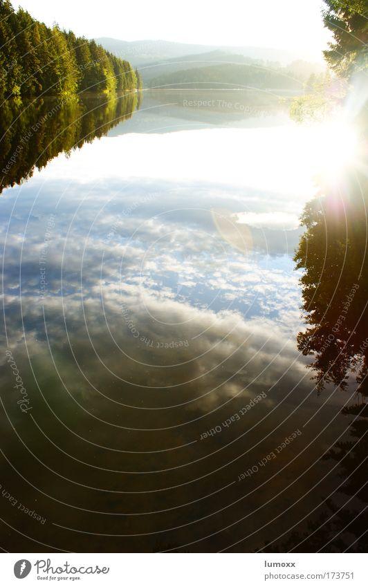 bodenlos Himmel Natur blau Wasser grün weiß Baum Sonne Sommer Wolken schwarz Wald Umwelt Landschaft Wärme See