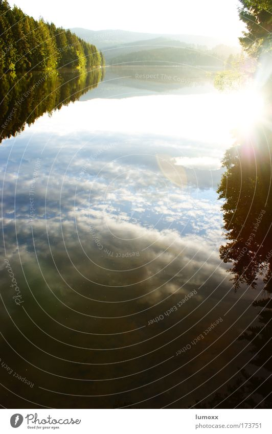 bodenlos Umwelt Natur Landschaft Wasser Himmel Wolken Sonne Sonnenaufgang Sonnenuntergang Sonnenlicht Sommer Wetter Baum Wald Seeufer Packer Stausee ästhetisch