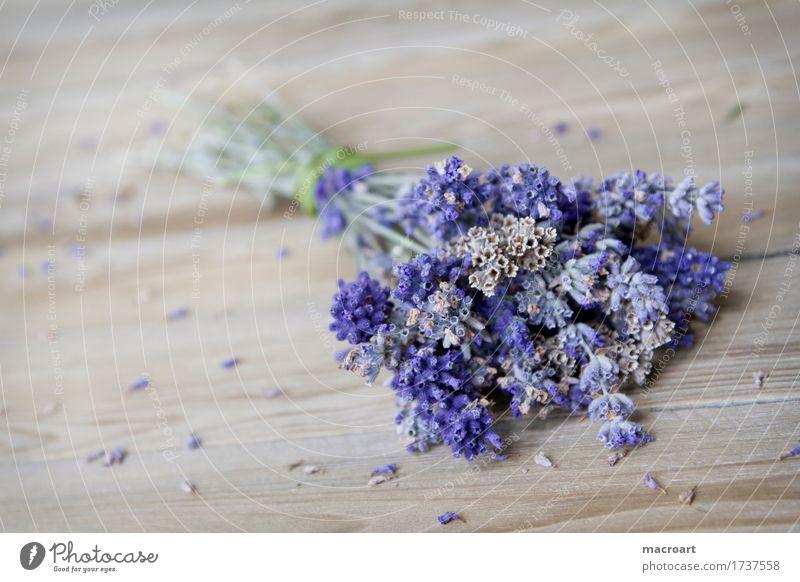Lavendel auf Holzplatte flos Tisch Blume Blüte violett Duft Geruch riechend Holztisch beruhigend Heilpflanzen Medikament Seele angustifolia vera Taubnessel