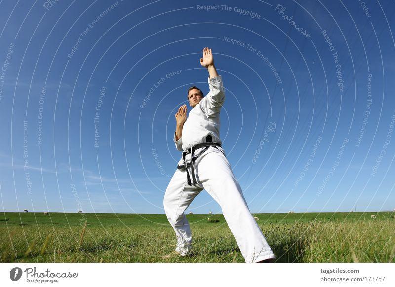 ROUND ONE - FIGHT ! Mann schwarz Kraft stark Typ Kontrolle kämpfen Kerl Gürtel Kampfsport Defensive Textfreiraum Karate Kämpfer Taekwondo