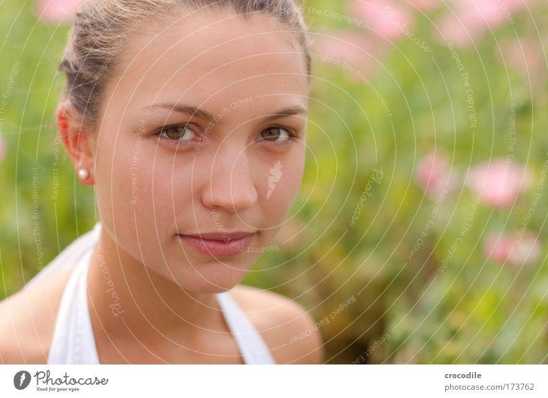Mohnblume Farbfoto Außenaufnahme Nahaufnahme Textfreiraum rechts Tag Schwache Tiefenschärfe Vogelperspektive Porträt Oberkörper Vorderansicht Blick