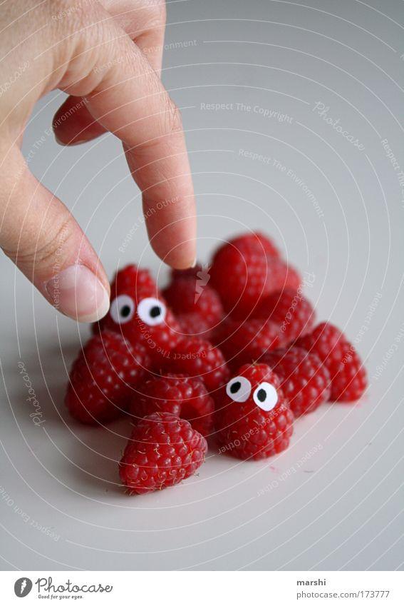 bald seid ihr Himbeereis... Hand rot Auge Gefühle Essen Gesundheit Frucht Angst Lebensmittel Ernährung Finger Perspektive fangen Appetit & Hunger lecker