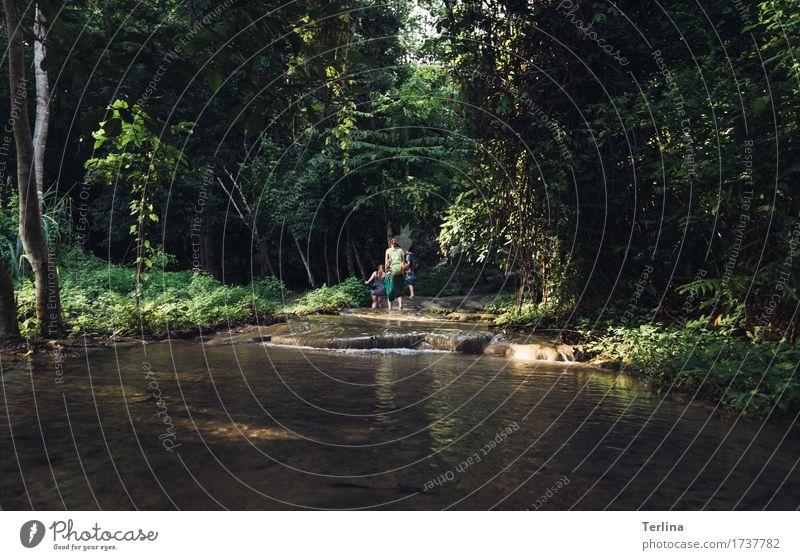 Welcome to the jungle Natur Ferien & Urlaub & Reisen schön Ferne Wald Umwelt gehen Zusammensein Freundschaft Freizeit & Hobby wandern Idylle Ausflug authentisch