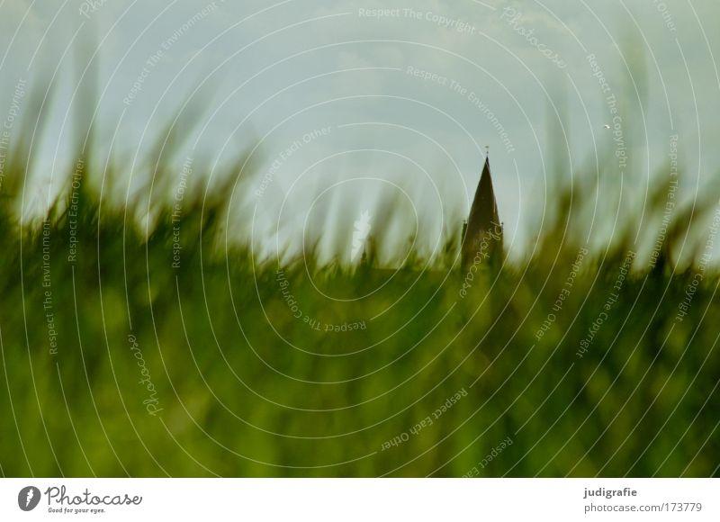 Vineta Farbfoto Außenaufnahme Tag Froschperspektive Umwelt Natur Landschaft Pflanze Himmel Gras Wiese Barth Kirche Bauwerk Sehenswürdigkeit grün Glaube