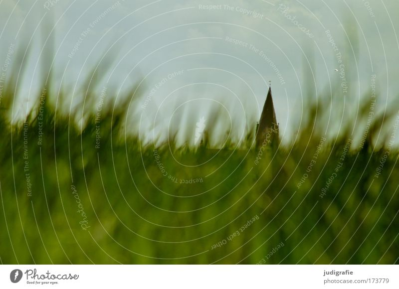 Vineta Natur Himmel grün Pflanze Wiese Gras Landschaft Religion & Glaube Architektur Umwelt Kirche Bauwerk Glaube Sehenswürdigkeit Barth