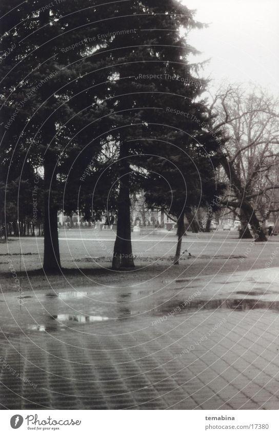 Latvia mb Park Riga