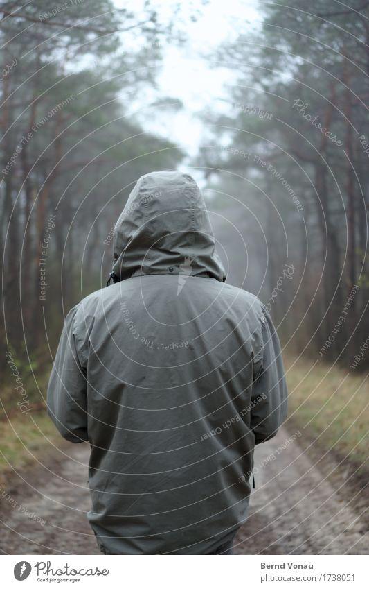 weiter Mensch Baum Einsamkeit ruhig Wald Gefühle Wege & Pfade Stimmung gehen Wetter Nebel nachdenklich stehen Bekleidung Fußweg Spaziergang