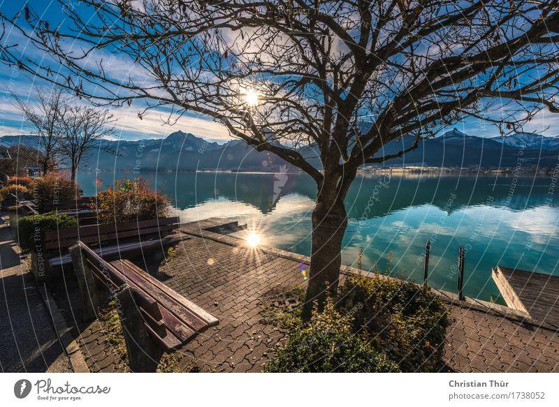 Wolfgangsee Natur Ferien & Urlaub & Reisen Pflanze Wasser Sonne Baum Landschaft Erholung ruhig Strand Berge u. Gebirge Leben Freiheit Schwimmen & Baden See