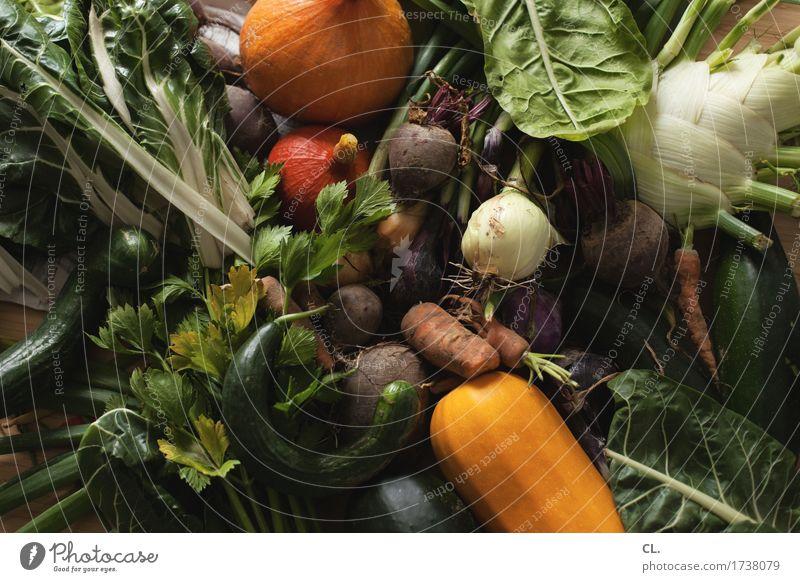 ernte Lebensmittel Gemüse Salat Salatbeilage Frucht Möhre Gurke Kürbis Kürbiszeit Zwiebel Fenchel Zucchini Ernährung Essen Mittagessen Abendessen Bioprodukte