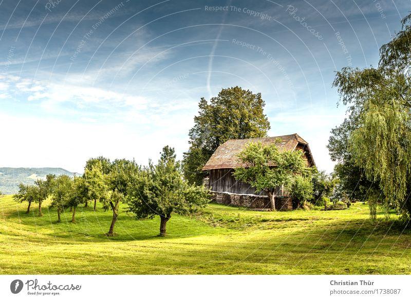Landleben Leben harmonisch Zufriedenheit Sinnesorgane Erholung ruhig Meditation Ferien & Urlaub & Reisen Tourismus Ausflug Sommer Sommerurlaub Sonne Umwelt