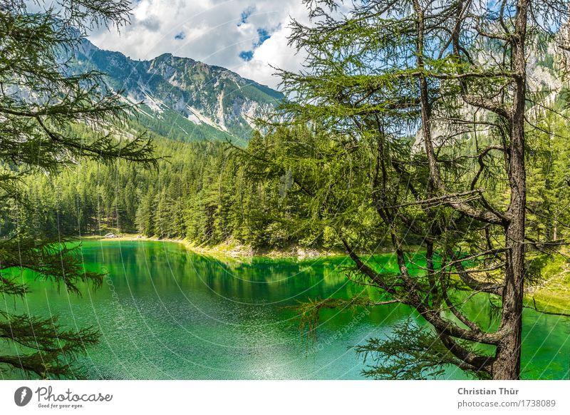 Grüner See Gesundheit Wellness Leben harmonisch Wohlgefühl Zufriedenheit Sinnesorgane Erholung ruhig Meditation Schwimmen & Baden Ferien & Urlaub & Reisen