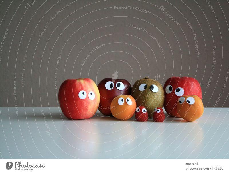 Obstler Farbfoto Lebensmittel Frucht Apfel Ernährung Gesundheit lecker Gefühle Angst Blick Schielen Alkoholisiert Nektarine Aprikose Himbeeren Kiwi