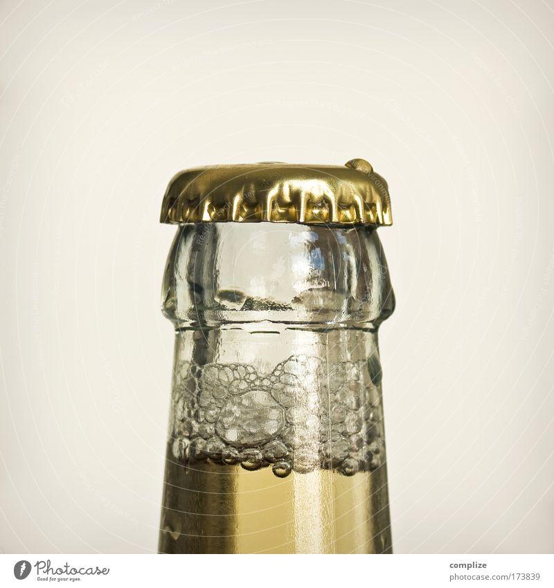 Das Gold des kleinen Mannes Farbfoto Gedeckte Farben Innenaufnahme Textfreiraum oben Zentralperspektive Getränk Erfrischungsgetränk Limonade Alkohol Bier