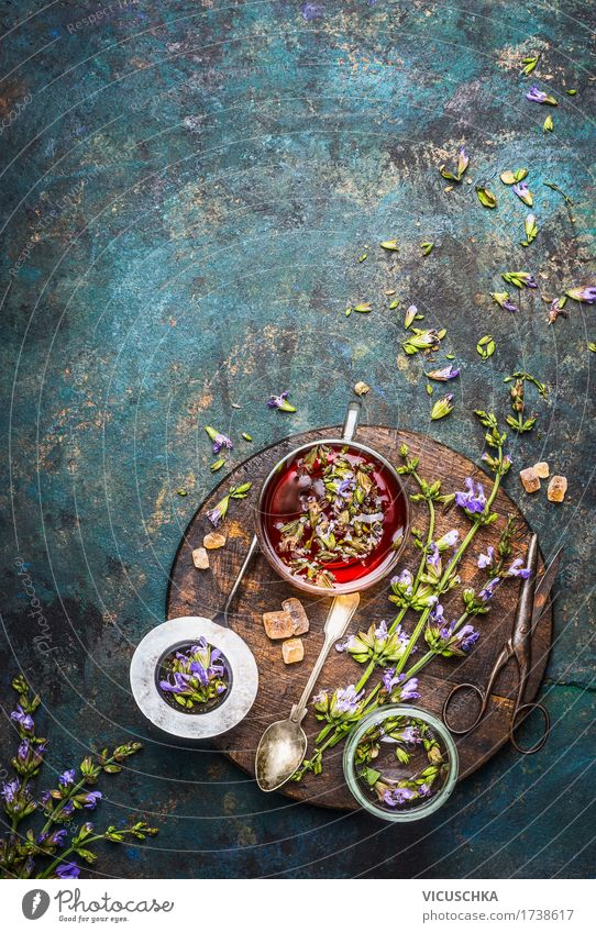 Kräutertee mit frischen Heilkräutern und Blumen Natur Gesunde Ernährung Leben Stil Gesundheit Lebensmittel Design Glas Tisch Kräuter & Gewürze Getränk Duft