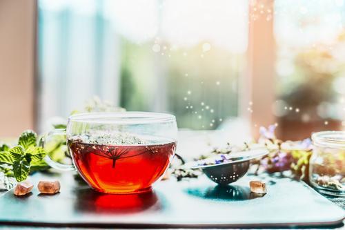 Tasse mit Kräutertee am Fenster Natur Gesunde Ernährung Leben Stil Gesundheit Design Häusliches Leben frisch Tisch Fitness Kräuter & Gewürze Getränk Erkältung