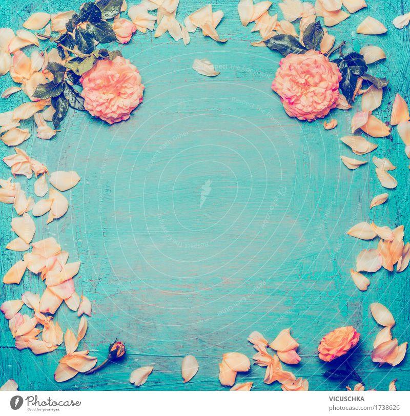 Nostalgie Rosen auf blauem Hintergrund Natur Pflanze Blume Blatt Blüte Liebe Hintergrundbild Stil Feste & Feiern Stimmung Design rosa Dekoration & Verzierung