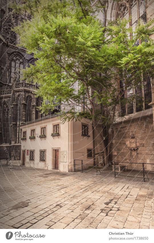 Stephanskirche Ferien & Urlaub & Reisen Tourismus Ausflug Ferne Sightseeing Städtereise Sommer Natur Baum Stadt Hauptstadt Stadtzentrum Altstadt Fußgängerzone