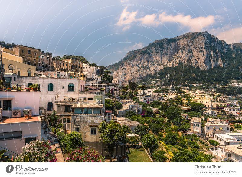Capri harmonisch Wohlgefühl Zufriedenheit Sinnesorgane Erholung Ferien & Urlaub & Reisen Tourismus Ausflug Abenteuer Sommer Sommerurlaub Insel Berge u. Gebirge