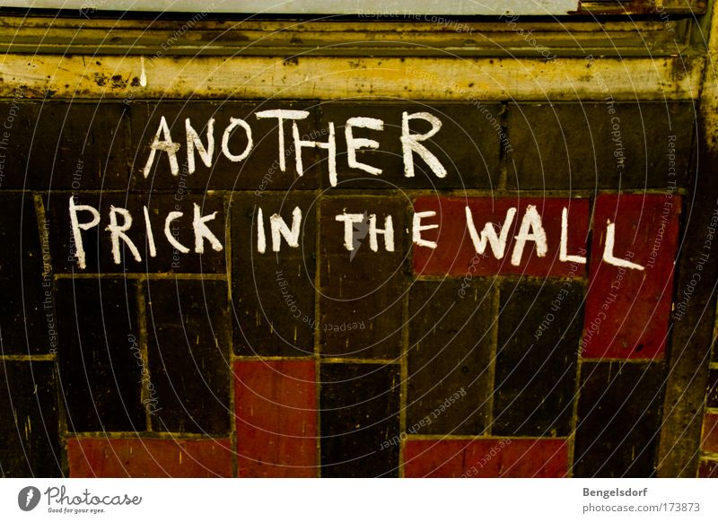 Another prick in the wall Wand Mauer Graffiti Fassade Lifestyle Wandel & Veränderung Fliesen u. Kacheln Rost Aggression Fensterrahmen