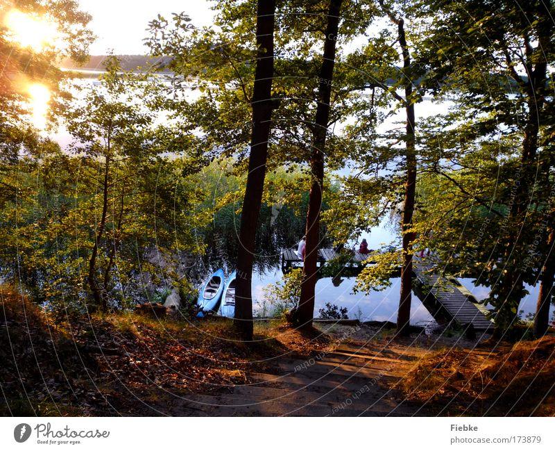 Sommerabend Farbfoto Außenaufnahme Textfreiraum unten Abend Reflexion & Spiegelung Sonnenlicht Sonnenstrahlen Sonnenaufgang Sonnenuntergang Gegenlicht Angeln
