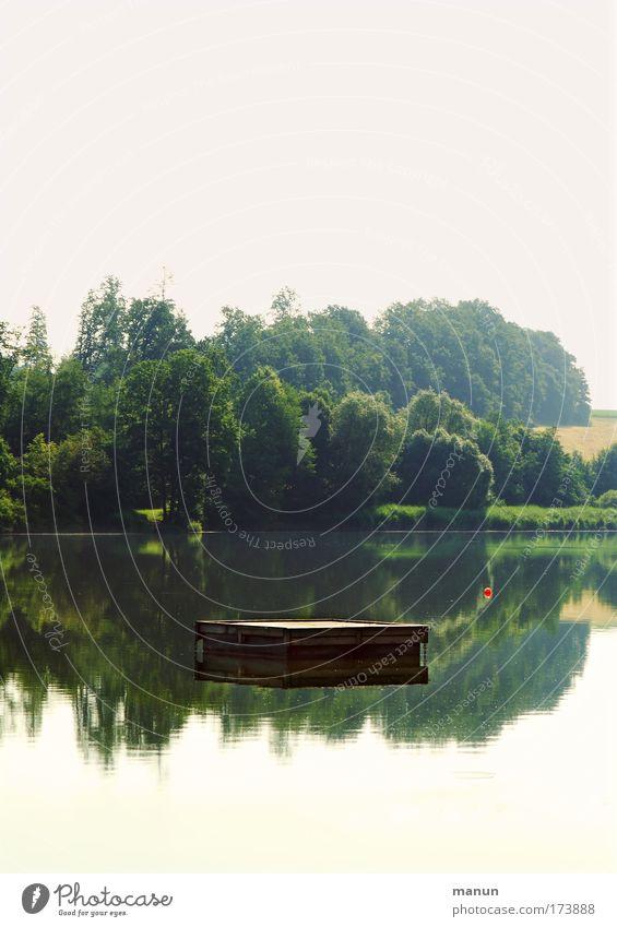 Seenplatte harmonisch Sinnesorgane Erholung ruhig Ferien & Urlaub & Reisen Natur Wasser Frühling Sommer Wald Seeufer Badesee genießen träumen natürlich