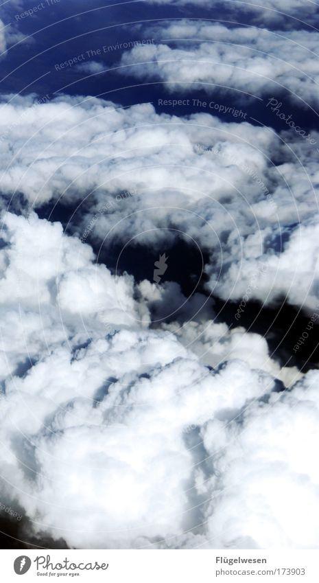 Ich sollte mit dem Rauchen aufhören, ehrlich! Himmel Ferien & Urlaub & Reisen Sommer Sonne Wolken Umwelt fliegen dreckig Schönes Wetter Frieden dumm atmen Dunst