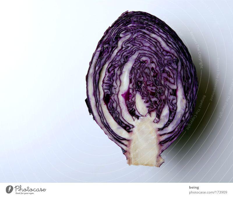 schöne Farben Strukturen & Formen Menschenleer Lebensmittel Gemüse Rotkohl Rotkohlblatt Ernährung Bioprodukte Vegetarische Ernährung Gesundheit Häusliches Leben