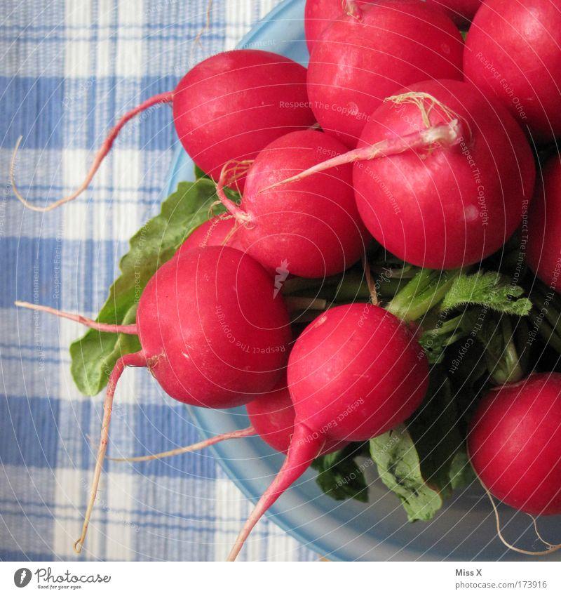 Radieschen natürlich Lebensmittel frisch Ernährung Küche Gemüse Appetit & Hunger Bioprodukte Abendessen Diät Festessen Picknick Schalen & Schüsseln Tischwäsche