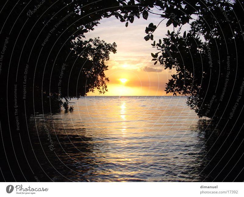 sunset Sonnenuntergang Licht leicht Meer light Wasser water sea